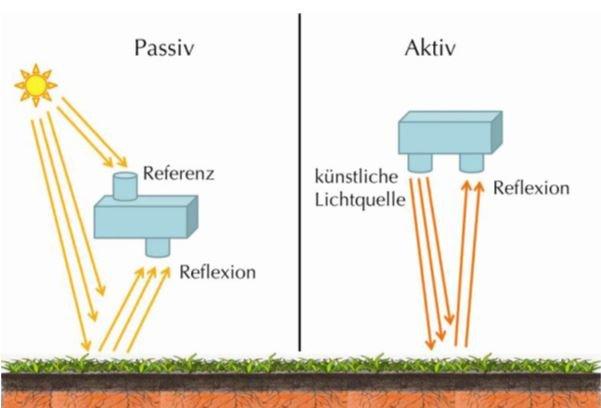Arbeitsprinzip eines aktiven und passiven Pflanzensensors
